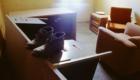 04-Office-Interior